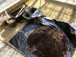 家庭菜園 土の消毒